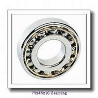 45 mm x 75 mm x 16 mm  SKF 7009 ACE/P4AL angular contact ball bearings