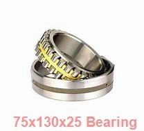 75 mm x 130 mm x 25 mm  FAG NJ215-E-TVP2 + HJ215-E cylindrical roller bearings