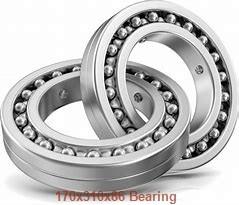 170 mm x 310 mm x 86 mm  NKE 22234-K-MB-W33+AH334-X spherical roller bearings