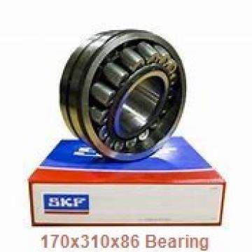 170 mm x 310 mm x 86 mm  FAG F-804415.ZL-K-C5 cylindrical roller bearings