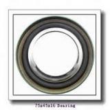 45 mm x 75 mm x 16 mm  SKF 7009 CD/HCP4A angular contact ball bearings